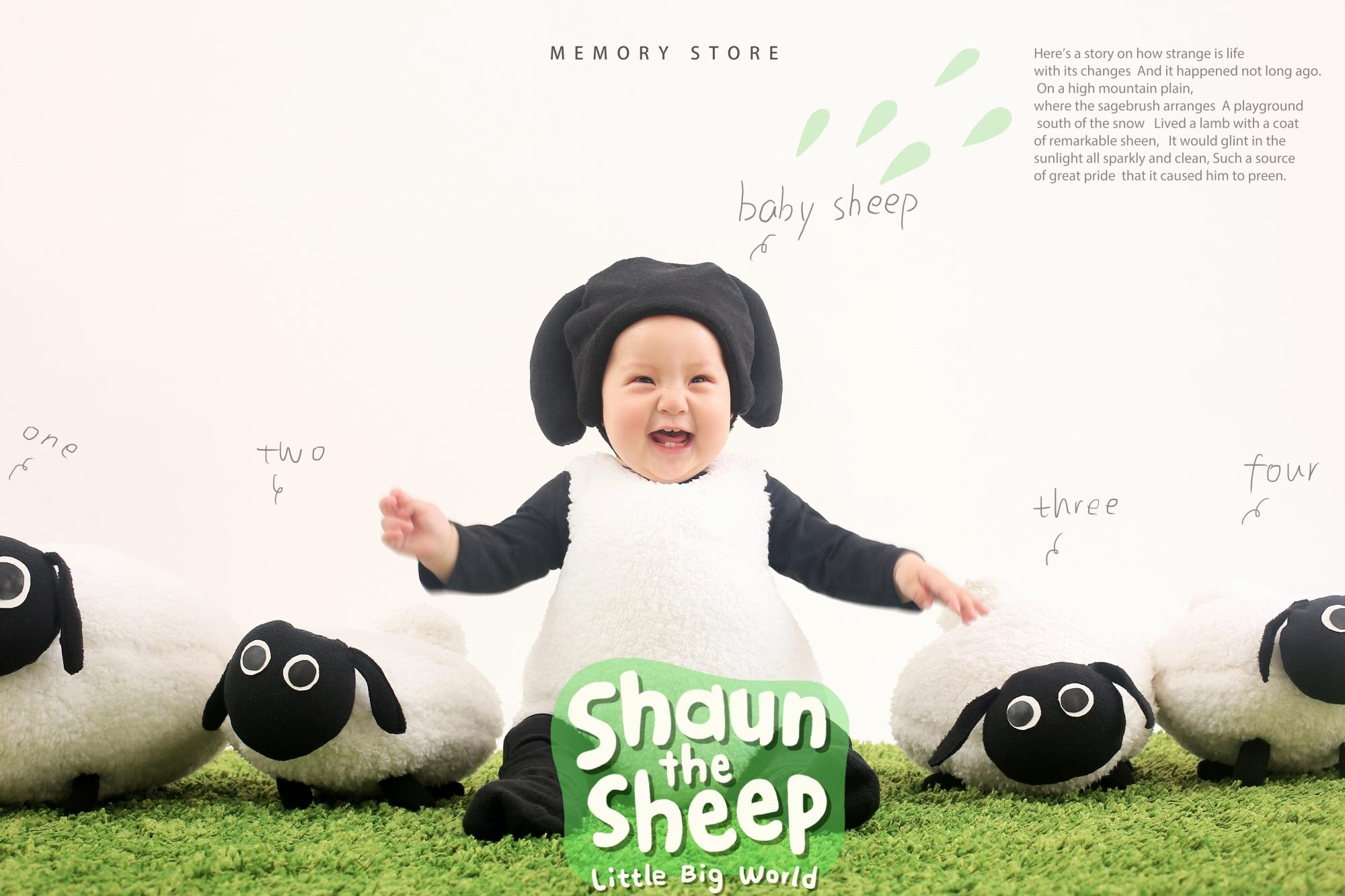 ~~~17肖恩羊 (5).jpg
