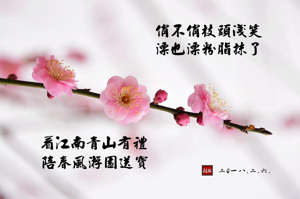 11 DSC_1990_副本.jpg 2.jpg
