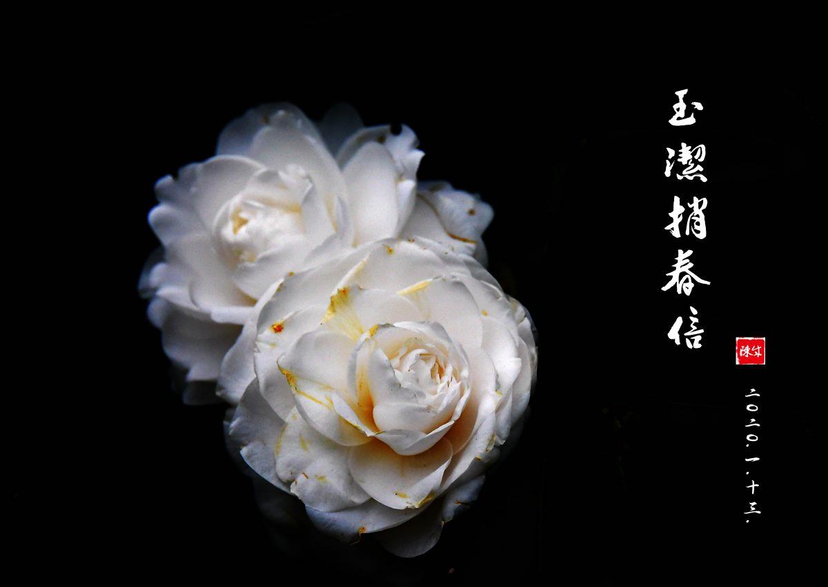 7 DSC_0348_副本_.jpg