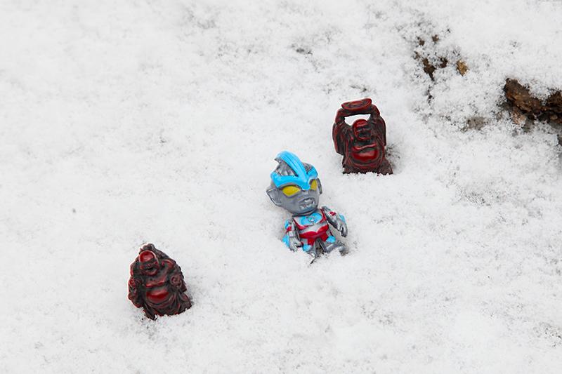 雪_MG_9374.jpg