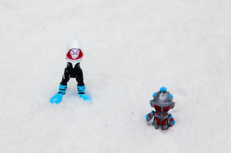 雪_MG_9366.jpg