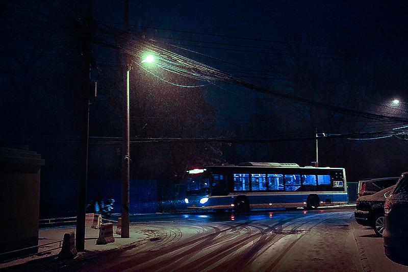 雪夜_MG_7463.jpg