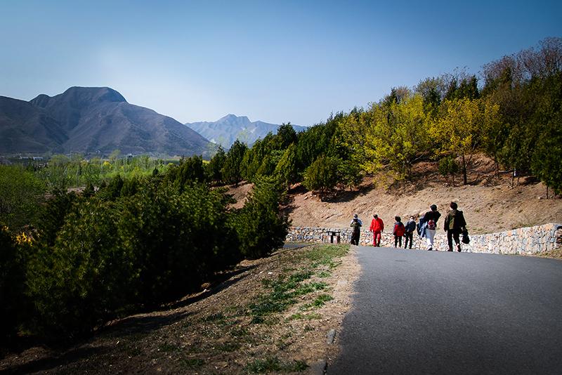 青龙湖森林公园_MG_0910.jpg