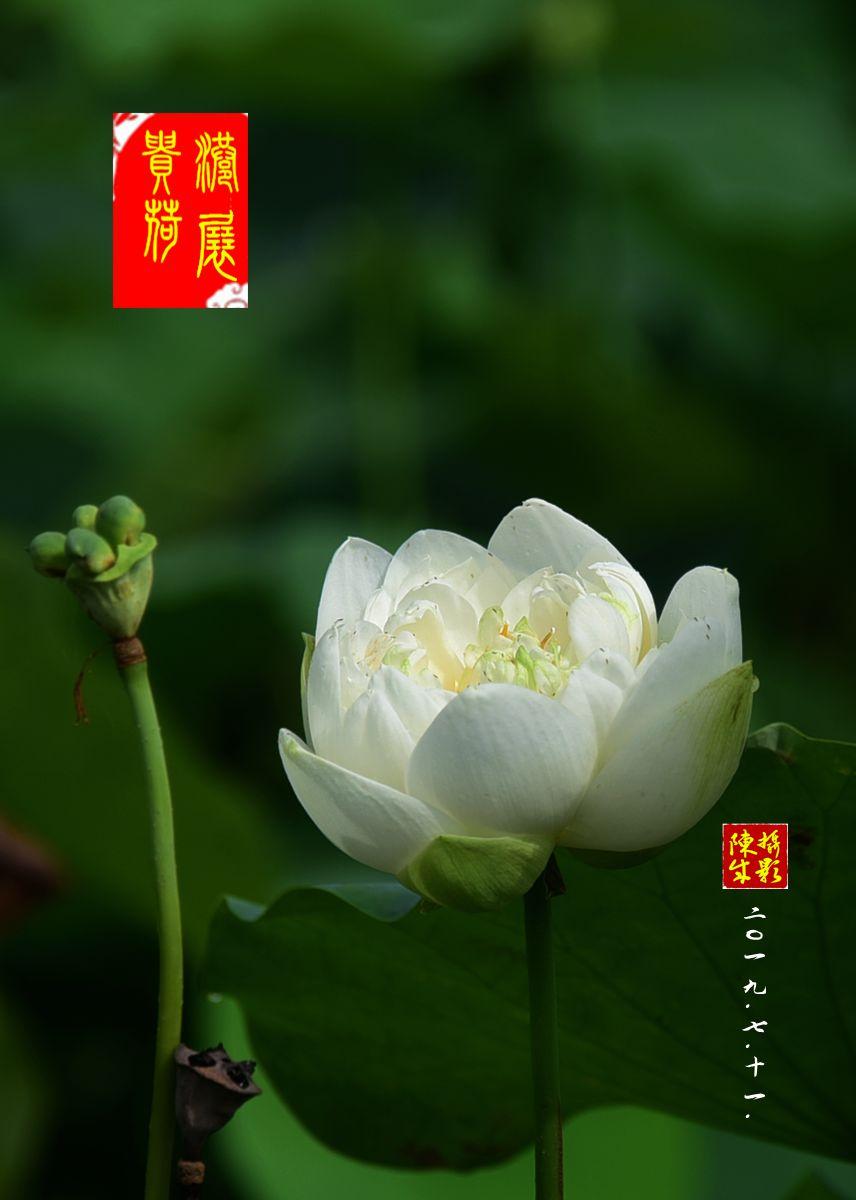 4 DSC_9374_副本.jpg