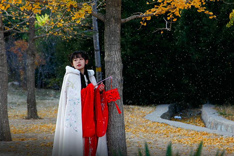 下雪啦_MG_2779.jpg